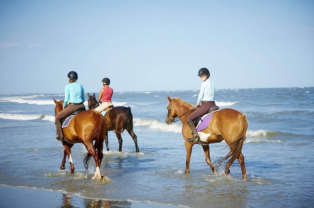 Beach Rides at Seabrook Island South Carolina