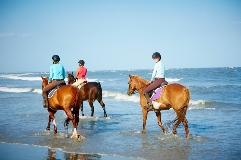three horses and riders from the seabrook island equestrian center on the beach