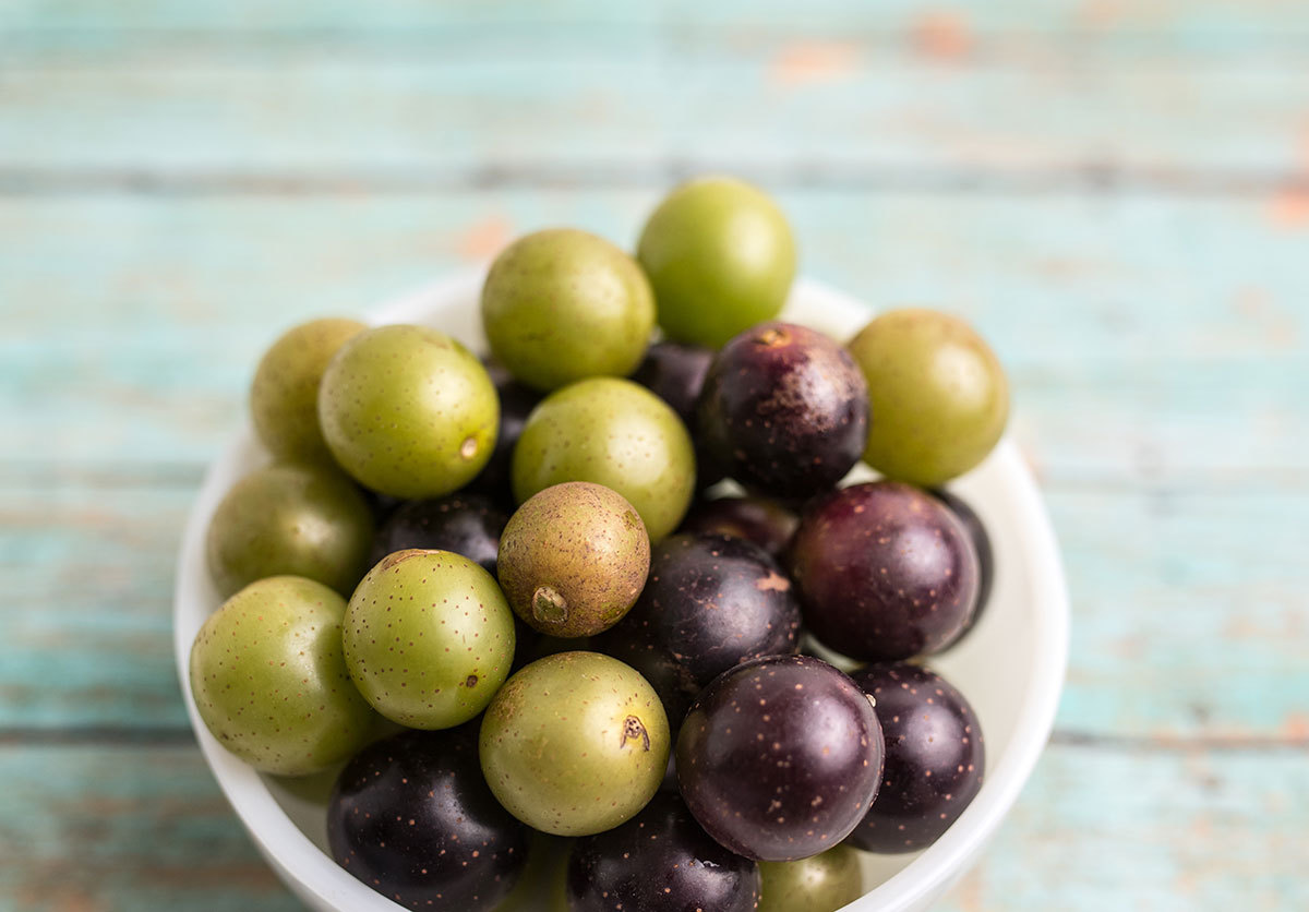 A bowl of colorful grapes sitting on a modern table