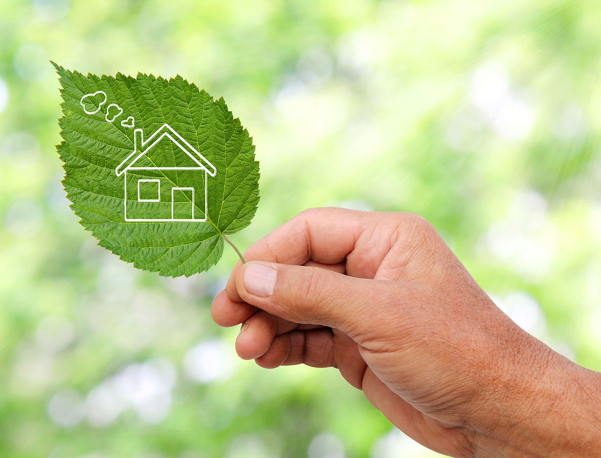 hand holding a leaf with a house on it to represent energy efficiency