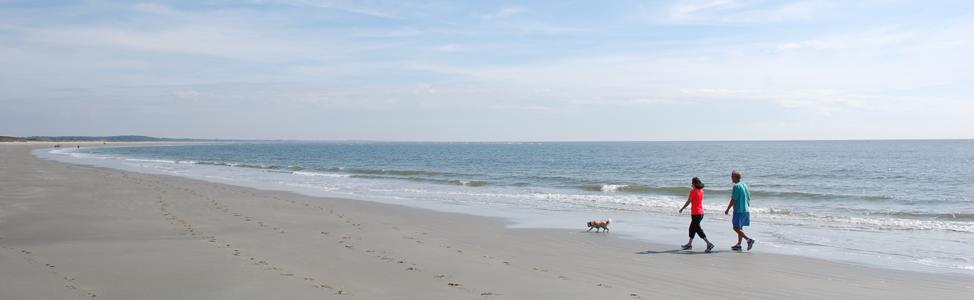 Beaches_main5_couple with dog walking on beach_5_banner_974x300_beaches_couple_with_dog_on_beach_1_dsc_0174_f1