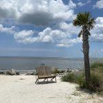 bench on seabrook island sc beach