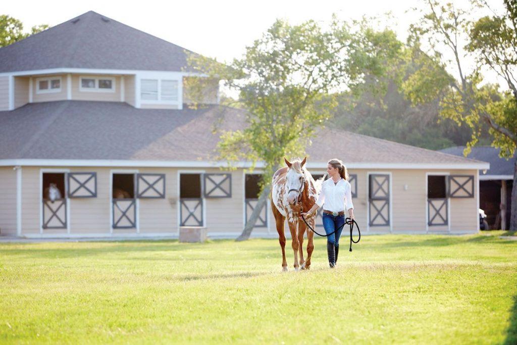 seabrook-island-equestrian-center-fall