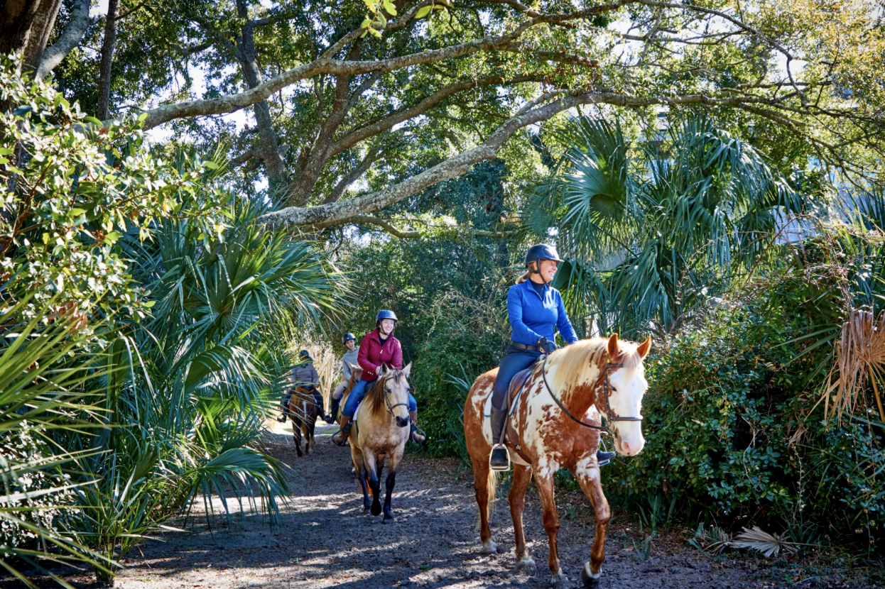 Horse Back Riding At Seabrook Island